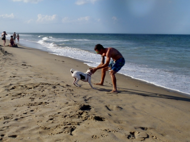 Daisy's first trip to the ocean!